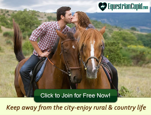 Love horse dating